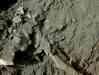 Kanalbau 09[1].06.2008 025.jpg